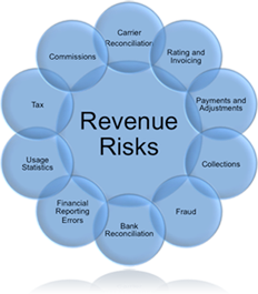 revenue_risks